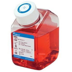 美国Gibco DMEM,高糖,含丙酮酸盐11995065