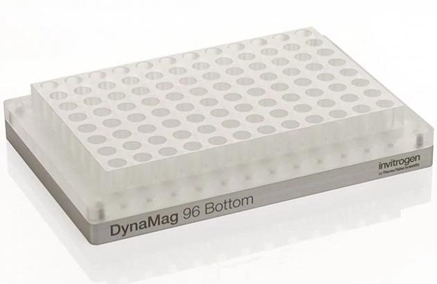赛默飞世尔Thermo DynaMag™-96 Bottom Magnet磁力架12332D