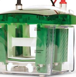 Bio-rad美国伯乐Mini-PROTEAN Tetra Cell小型垂直电泳槽,1-2块,厚0.75mm凝胶1658002