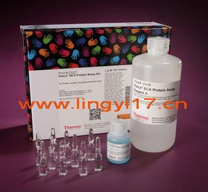 Thermo Scientific经典畅销-Pierce BCA蛋白定量试剂盒23227