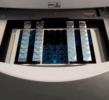 美国BIOLOGIX巴罗克EZcap PCR铝箔封膜条61-0304