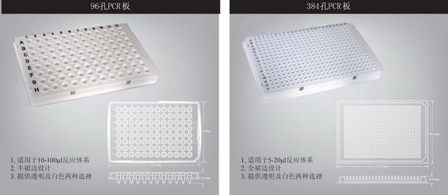 AXYGEN爱思进PCR管、PCR板