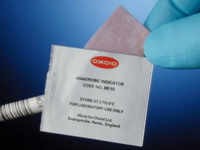 Thermo Oxoid厌氧指示剂(刃天青)BR0055B