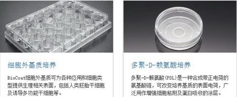 BD BioCoat包被细胞培养容器,培养板