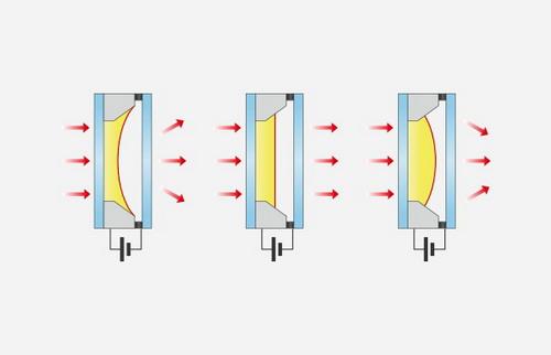 进口Logos LUNA-II全自动细胞计数仪