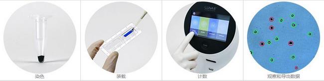 韩国Logos LUNA-II全自动细胞计数仪,进口细胞计数仪