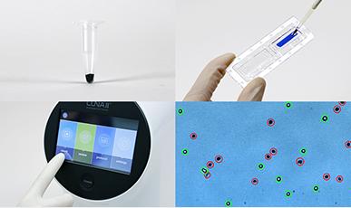 Logos LUNA-II全自动细胞计数仪,代替life计数仪