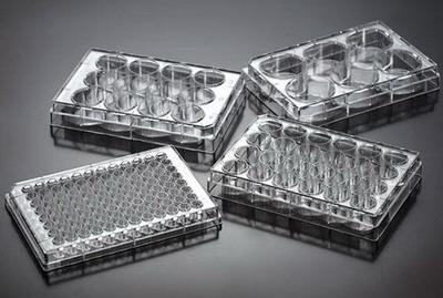 一次性细胞培养板TCP011004,TCP011006,TCP011012