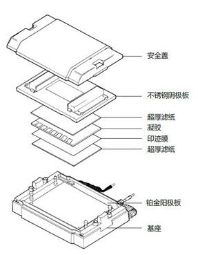 Trans-SD通用型半干转印电泳槽