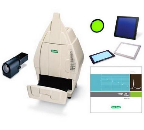 美国进口BIO-RAD伯乐Gel Doc XR+凝胶成像系统